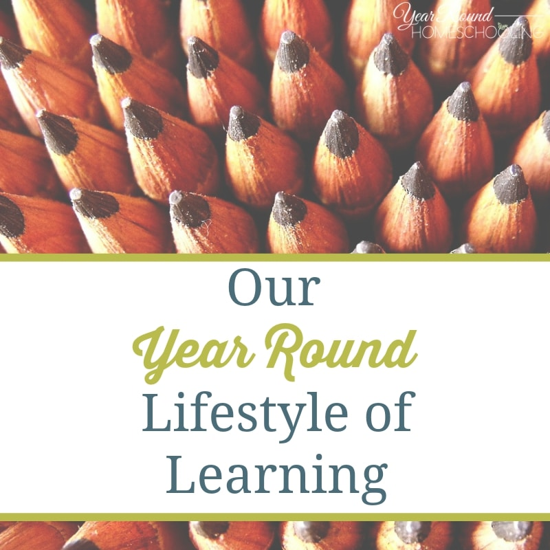 Our Year Round Lifestyle of Learning