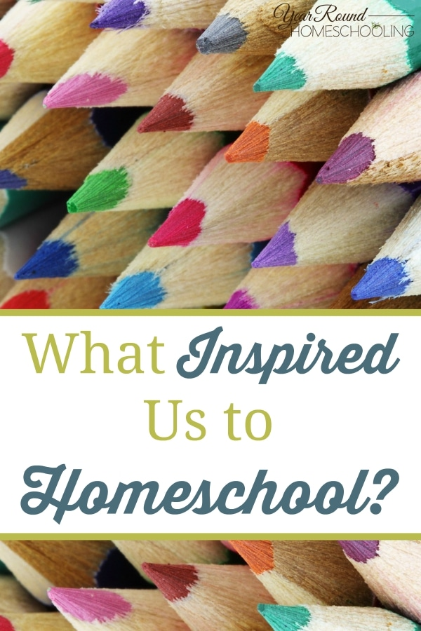 What Inspired Us to Homeschool - By Beth