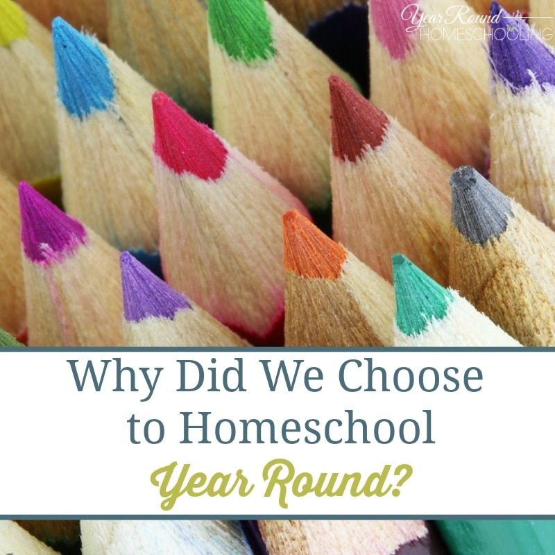Why Did We Choose to Homeschool Year Round?