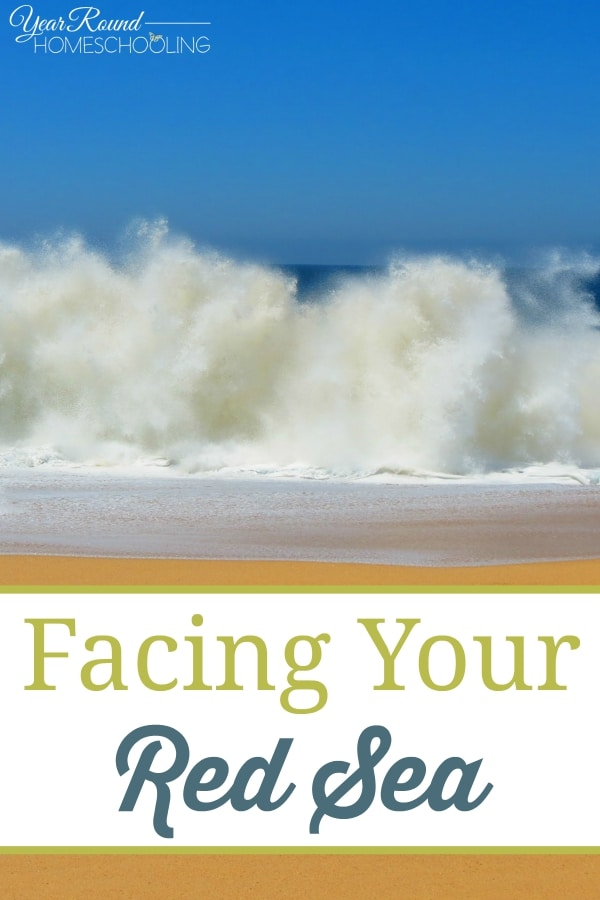 Facing Your Red Sea - By Trish