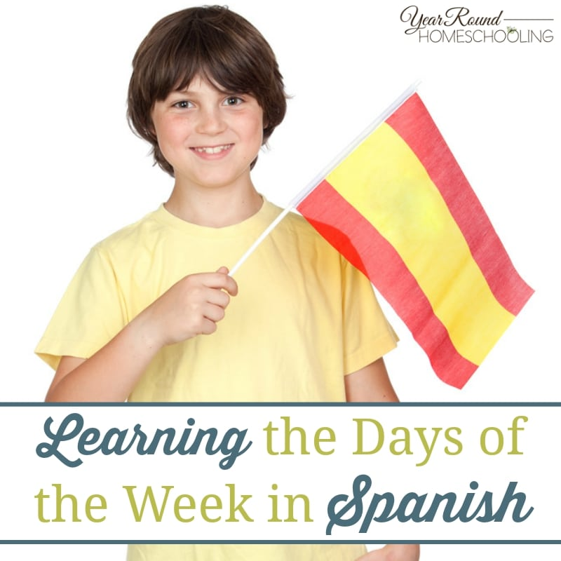 Learning the Days of the Week in Spanish