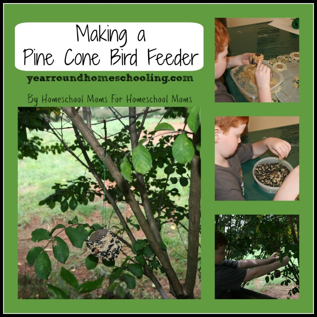 Making A Pine Cone Bird Feeder