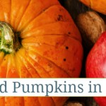 Apples and Pumpkins in Art