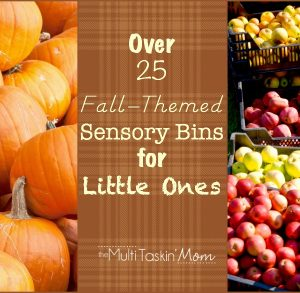 25 Fall Themed Sensory Bins for Little Ones