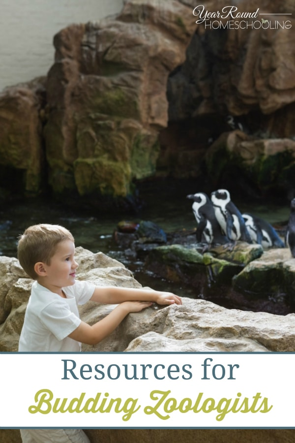Resources for Budding Zoologists - By Tiffany