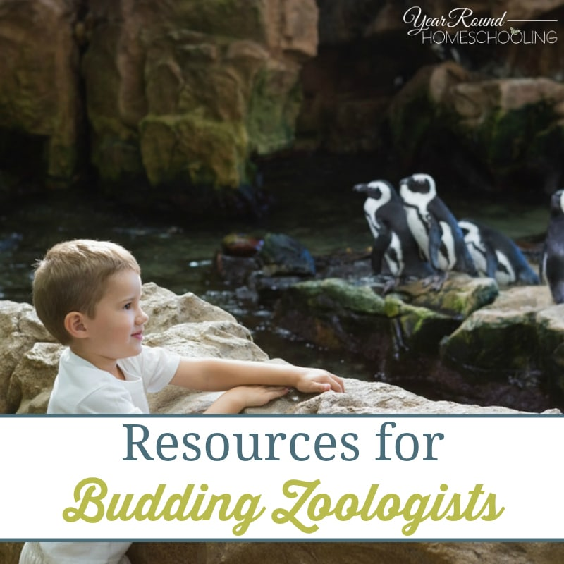 Resources for Budding Zoologists