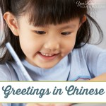 Ni Hao ( Hello ) In Chinese