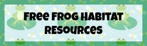 FrogHabitat