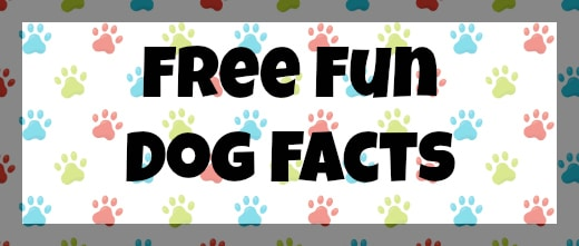 Free Dog Fun Facts