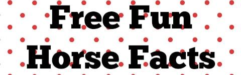 Free Fun Horse Facts