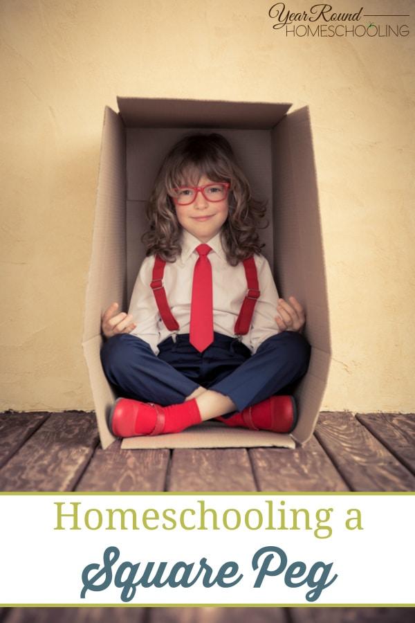 why homeschool, reasons to homeschool, homeschooling reasons, homeschool, homeschooling