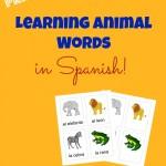 Spanish Animal Words
