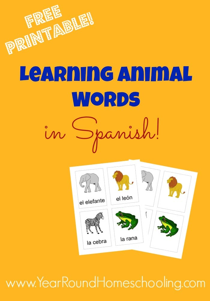 Spanish Animal Words