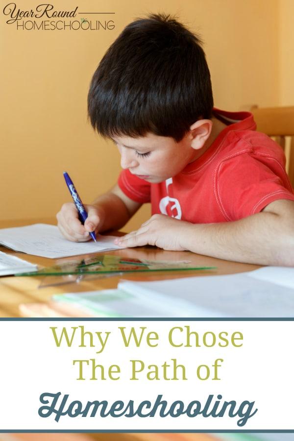 why homeschool, why we chose to homeschool, homeschool, homeschooling