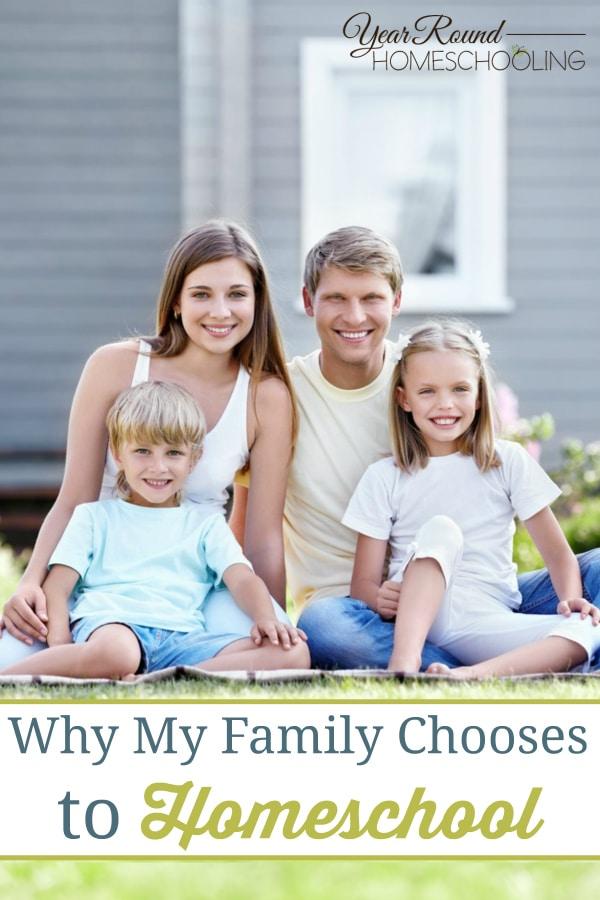 homeschool, homeschooling, year round homeschooling story