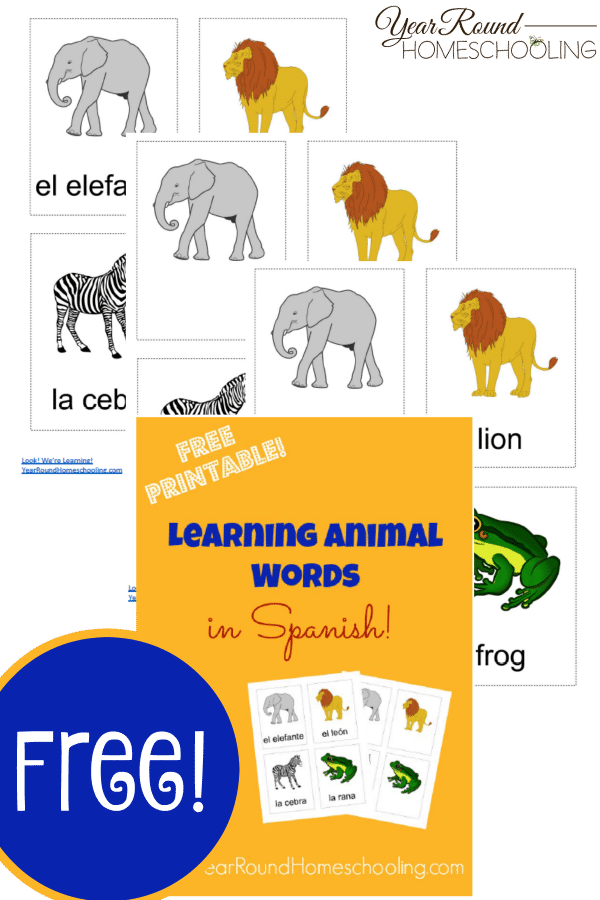 spanish animal words, spanish, animals, spanish animal flash cards, homeschool, homeschooling, worksheet, printable