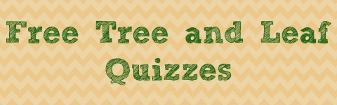 Free Tree and Leaf Quizzes