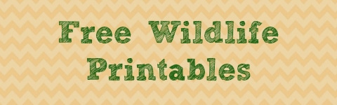 Free Wildlife Printables