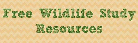 Free Wildlife Study Resources