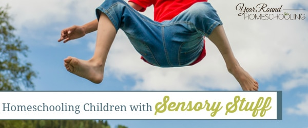 Homeschooling Children with Sensory Stuff