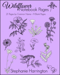 Wildflower Notebooking Pages