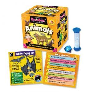 Brain Box - Animals
