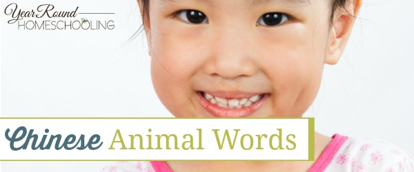 Chinese Animal Words