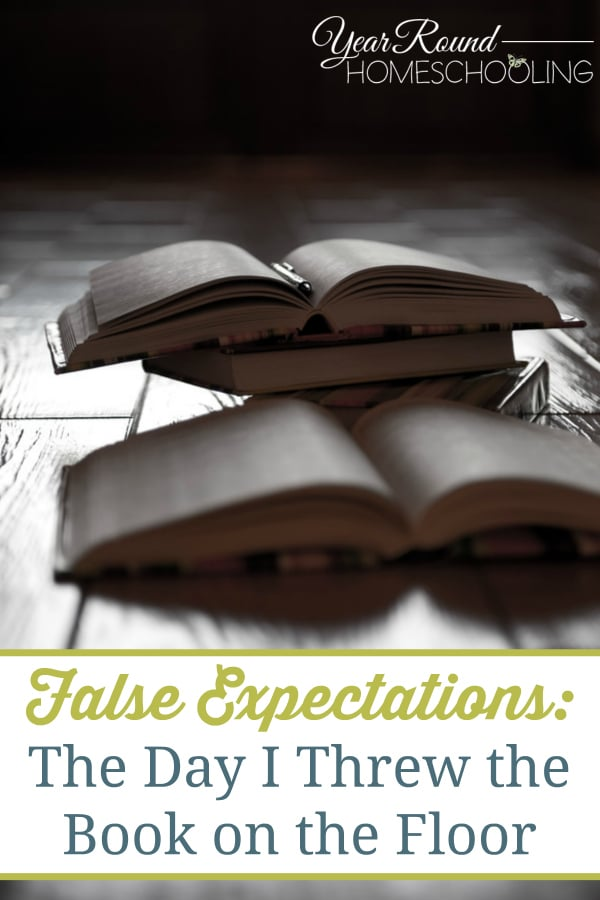 false expectations, unrealistic expectations for homeschooling, homeschooling expectations, homeschool mom fail, homeschool, homeschooling