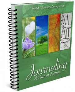 Journaling-Year-Nature-696x852