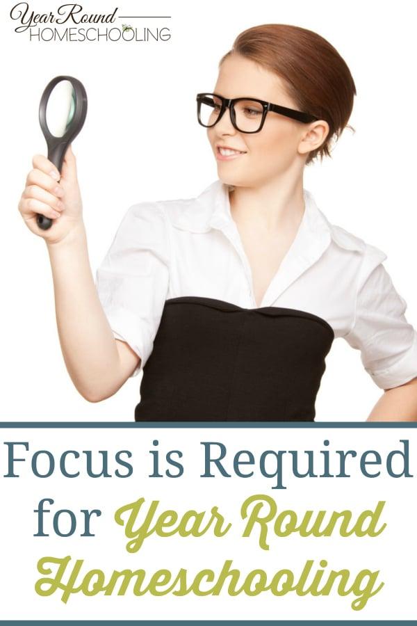 focus on homeschool, homeschooling focus, homeschool, homeschooling, year round homeschooling