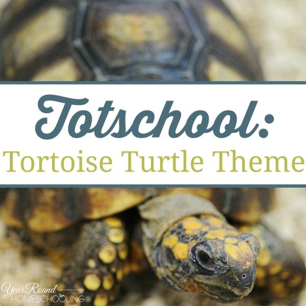Totschool:  Tortoise Turtle Theme