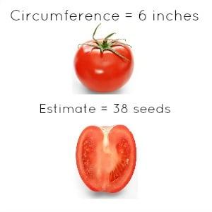 tomato2-YRH