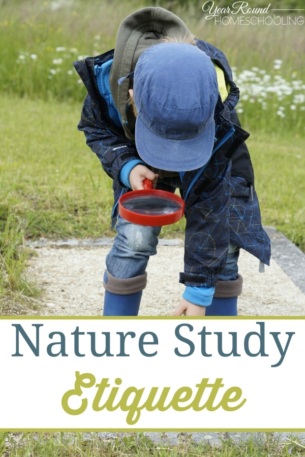Nature Study Etiquette - By Beth