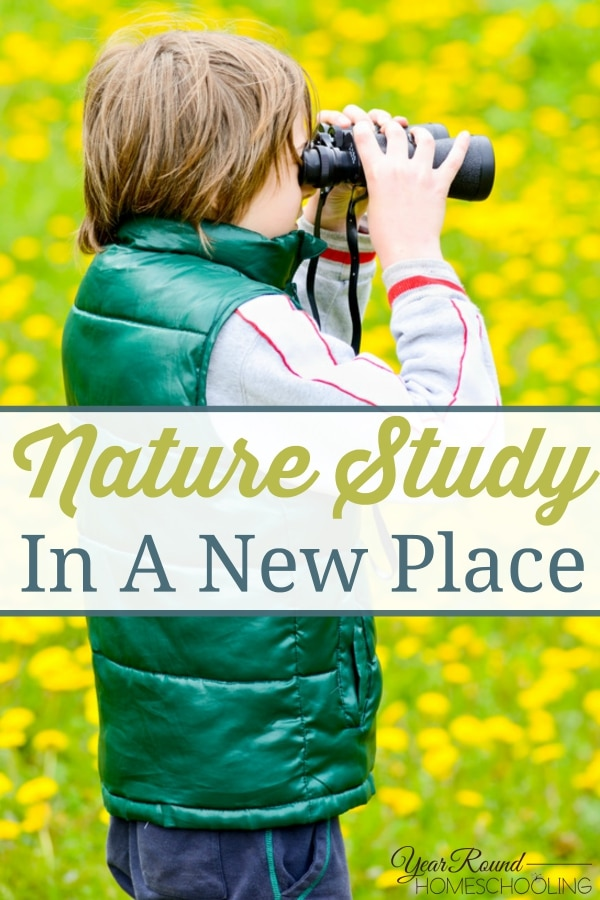 Nature Study In A New Place - By Beth Hollman