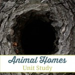 Animal Homes Unit Study