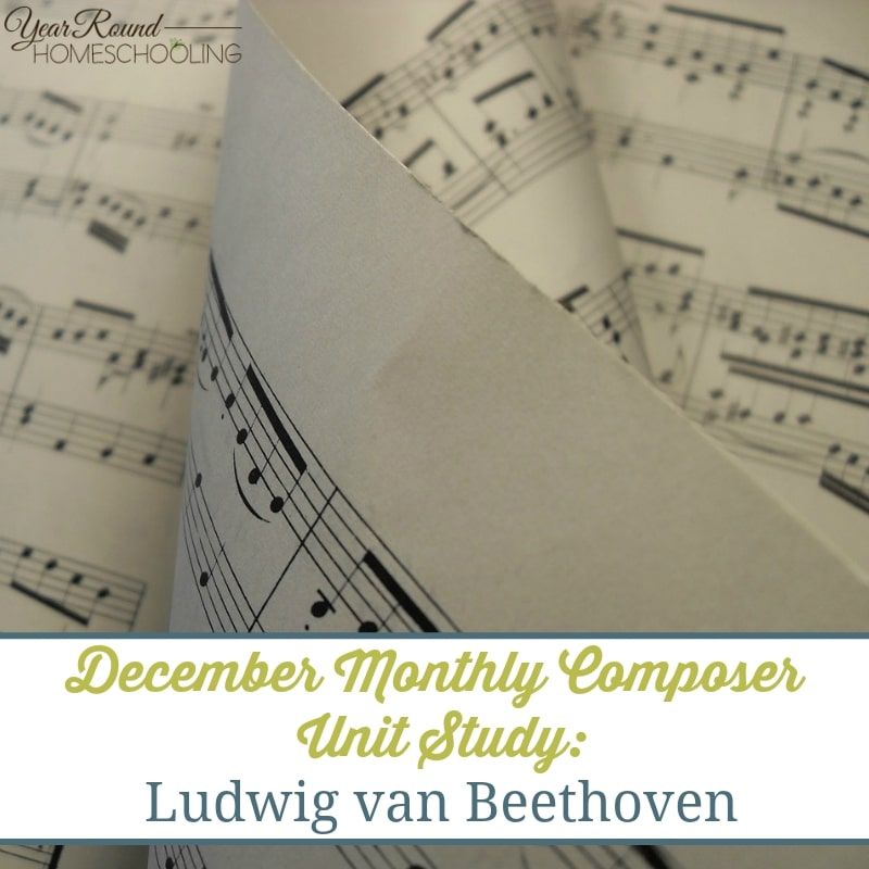 This months unit study is on one of the most famous composers, Beethoven. Read a brief bio, listen to music and fun activities. :: www.yearroundhomeschooling.com