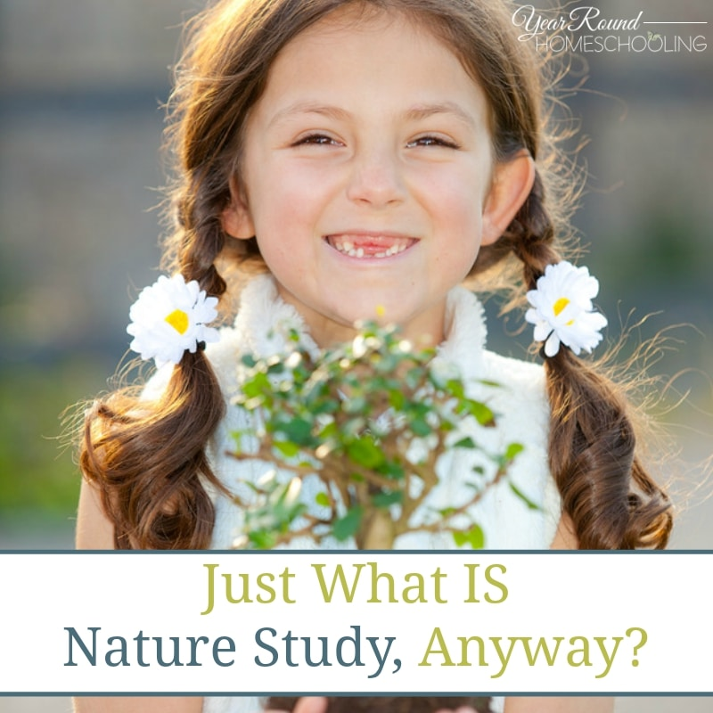 Just What IS Nature Study, Anyway?