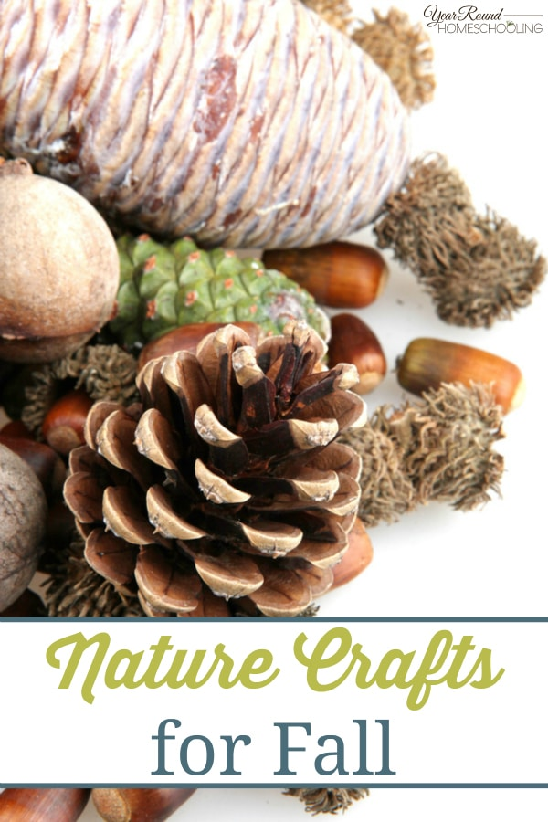 Nature Crafts for Fall - By Beth