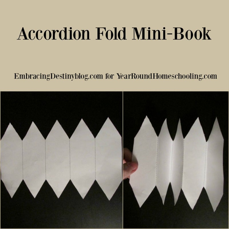 Accordion Mini Book for lapbooks