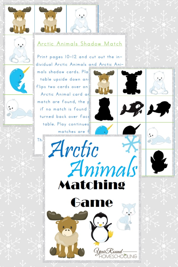 Arctic Animals Matching Game - By Year Round Homeschooling1