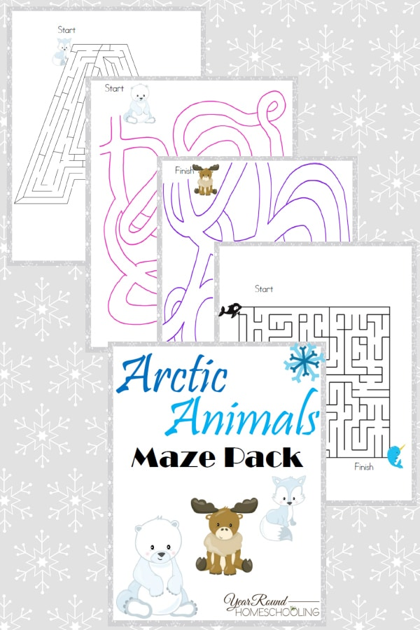 Arctic Animals Maze Pack - By Year Round Homeschooling