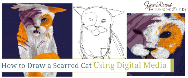 How to Draw a Scarred Cat Using Digital Media