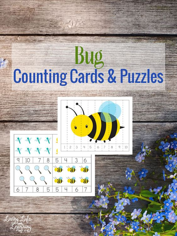Free Bug Counting Cards and Puzzles