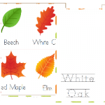 Free Arbor Day Learning Pack