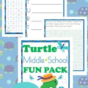 turtle, middle school, word search, homeschool, homeschooling, printable
