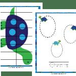 Free Turtle PreK Fun Pack
