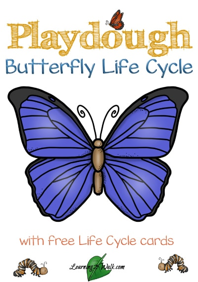 Free Playdough Butterfly Life Cycle Cards