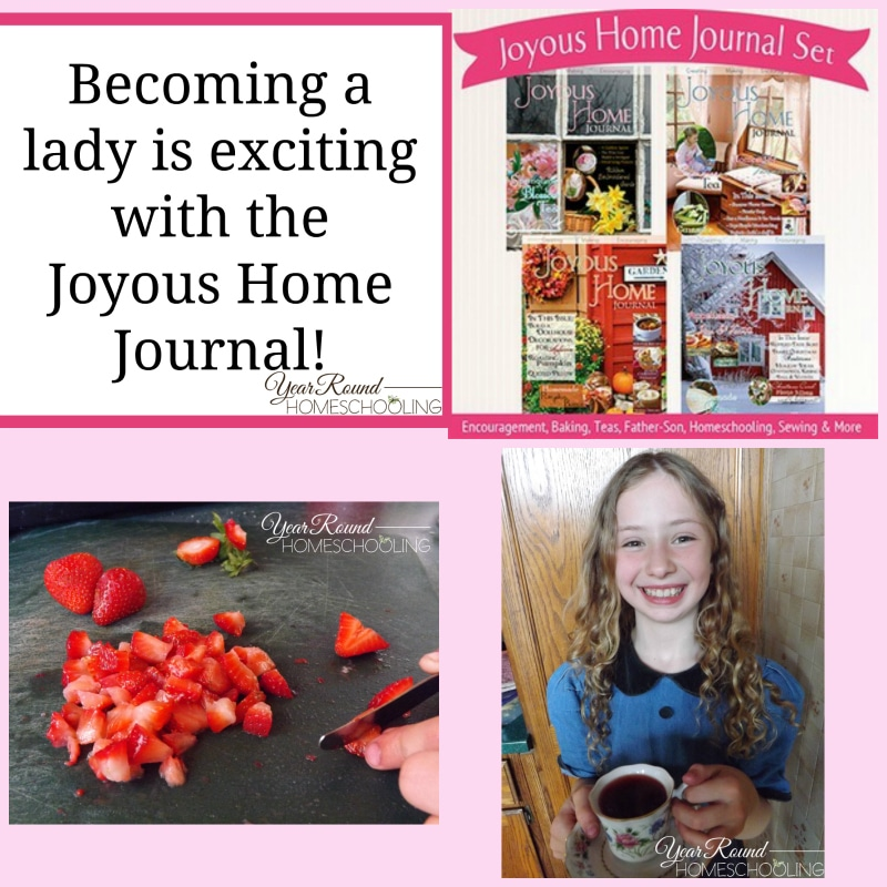 home ec, homemaking, homeschool, homeschooling