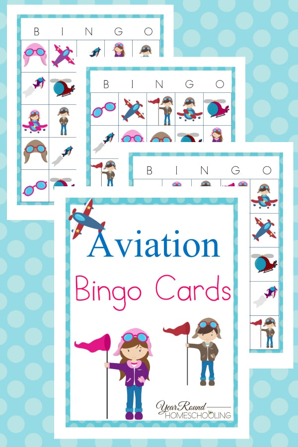 Aviation Bingo Cards