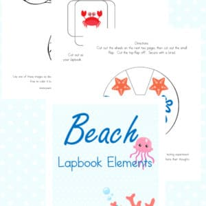 beach lapbook, beach study, lapbook, lapbooking, homeschool, homeschooling, printable